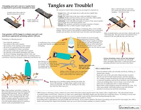 Tangles are Trouble Infographic