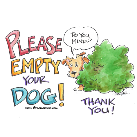Please, Empty Your Dog!