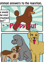 The Puppy Cut